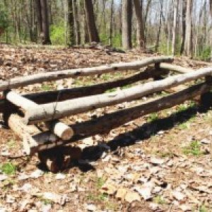 How to make an Evergreen Bough Bed