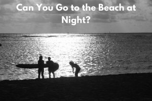 Can You Go to the Beach at Night?